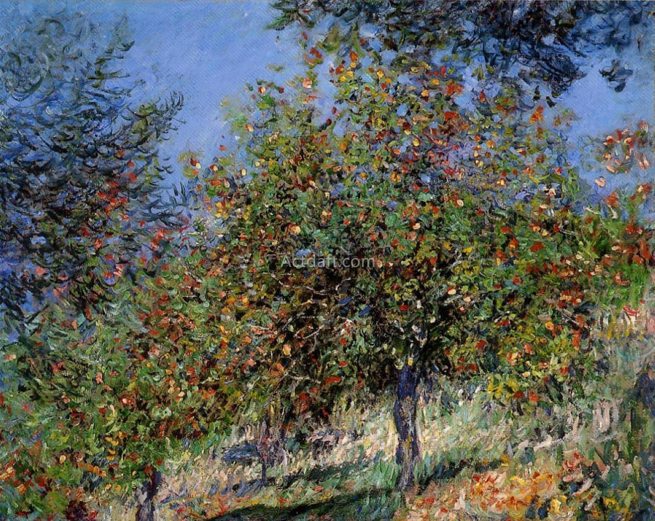Apple Trees on the Chantemesle Hill 1878
